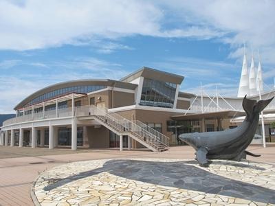 長崎五島うどんの最寄港でもある有川港ターミナル
